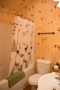 Cabin 0 Fox - full bath