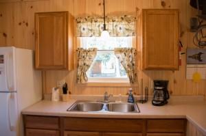 Cabin 0 Fox - kitchen sink