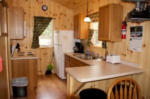 Cabin 1 Hummingbird - kitchen