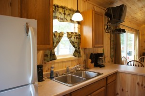 Cabin 1 Hummingbird - kitchen sink