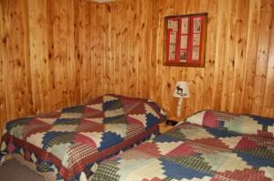 Cabin 10 Moose - 2 full size