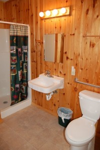 Cabin 10 Moose - shower bath