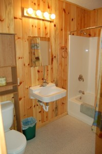 Cabin 10 Moose - full size bath