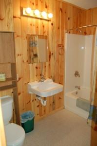 Cabin 10 Moose - full size bath