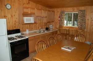 Cabin 2 Walleye - kitchen & breakfast bar