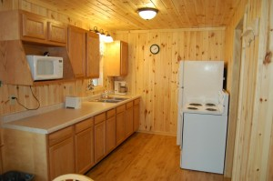 Cabin 3 Bear - kitchen