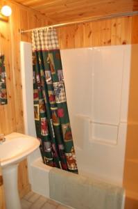 Cabin 6 Eagle - full bath