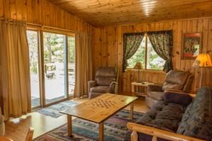 Cabin 10 Moose - living